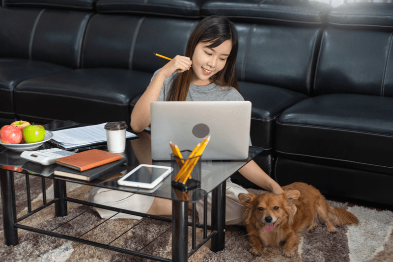 The Definitive Project Manager's Guide to Running a Remote Team