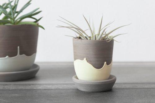 Cactus-Stonewear