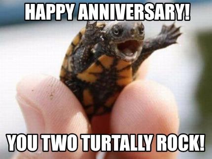 turtally rock meme