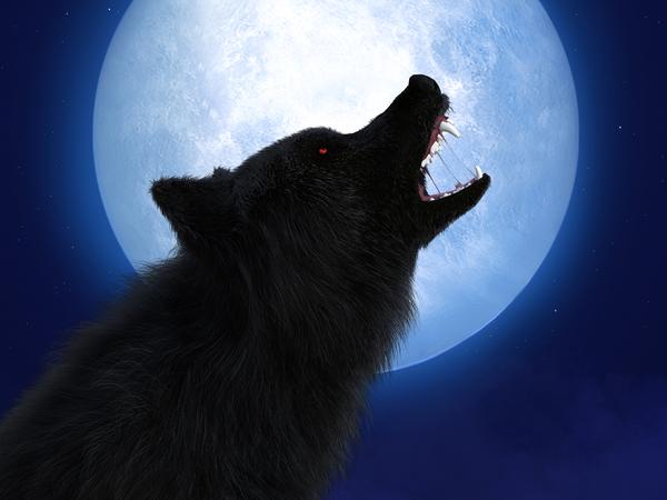 werewolf-game